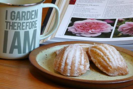 Madeleines, a cup of tea, and a gardening book... what could be better?