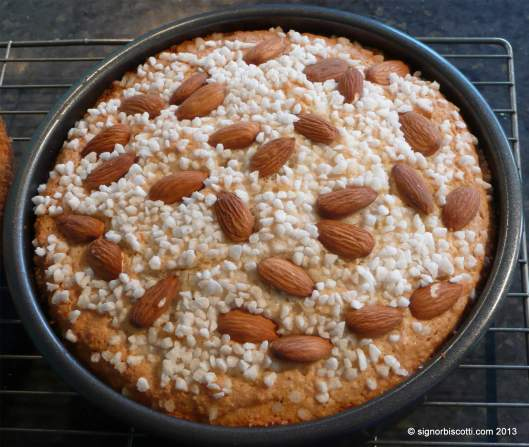 The baked top layer with its crust of sugar and almonds