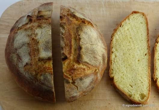 Bread made with Semola di grano duro rimacinata
