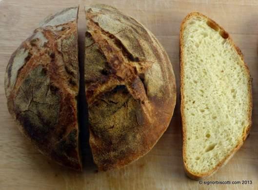 Bread made with pudding semolina