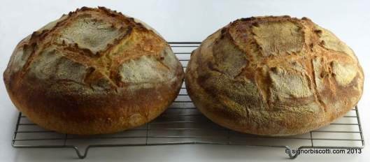 Bread made with Semola di grano duro rimacinata (l) and pudding semolina (r)