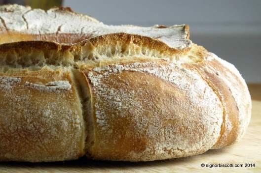 Close up of sourdough couronne bordelaise