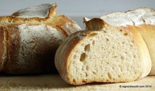 Crumb shot of sourdough couronne bordelaise
