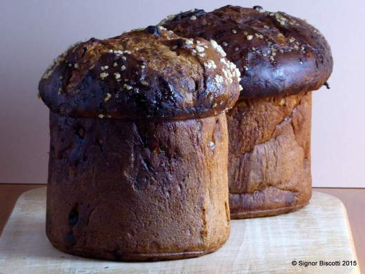 Yeasted panettone baked in tins